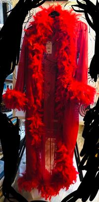 Red feathered shawl  525 km