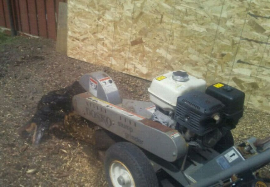 stump grinding and removal bda84c21-7e9b-474c-949f-5edcae72c288