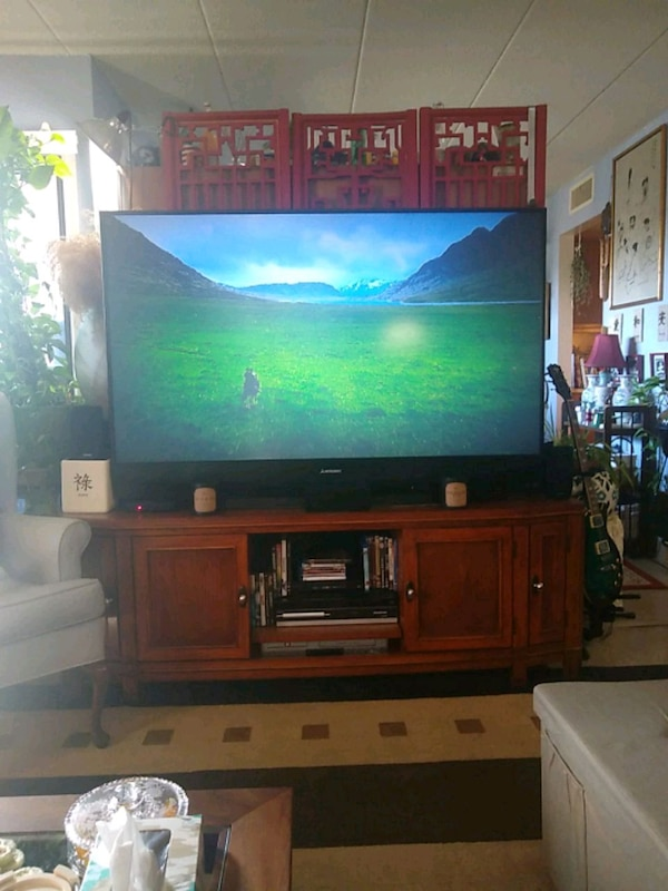 """65"""" Mitsubishi tv. The P in DLP means projection."""