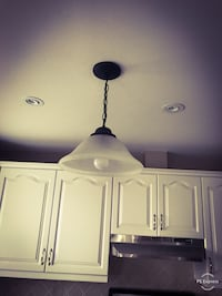 Pendant/Light Fixture/Lamp