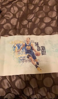 Stephen Curry canvas poster.