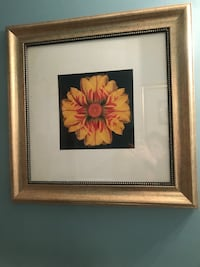 Gold frames wall pictures Knoxville, 37921