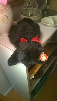 """TY """" Licorice"""" the Cat Boise, 83702"""