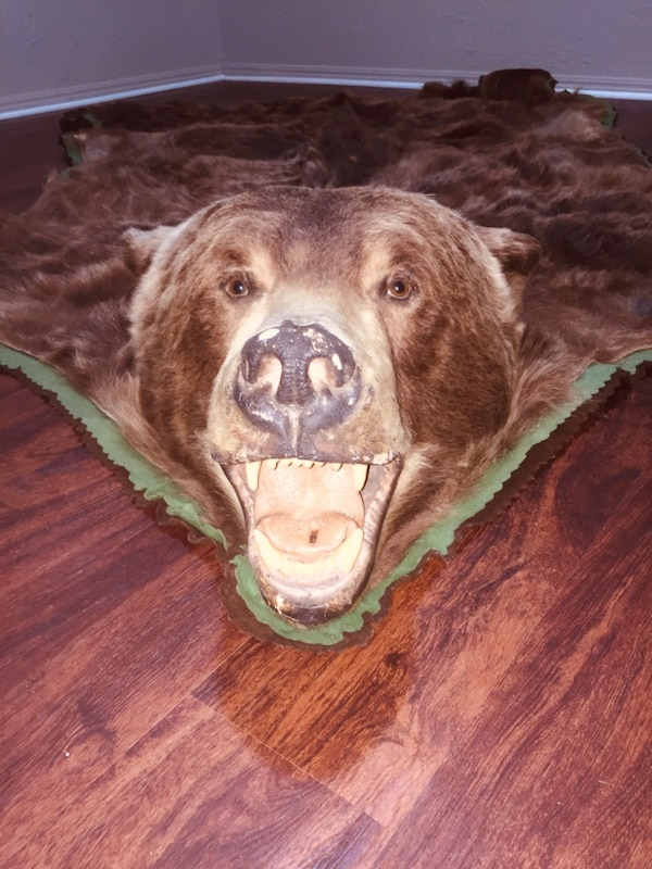 Grizzly Bear Rug 2