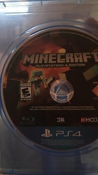 Minecraft Sony PS4 case