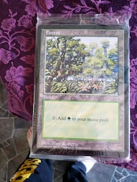 magic the Gathering oversized land cards Bunker Hill, 25413