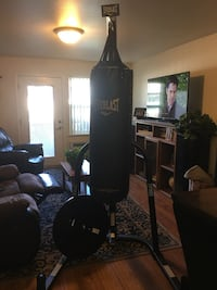 Everlast punching Bag  Central Point, 97502