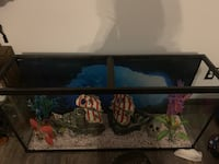 60 gallon fish tank Des Moines, 50320