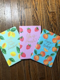 Set of Three Lined Notebooks Toronto, M6K