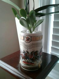 Lucky tree plant in ceramic vase London, N6H 0A5