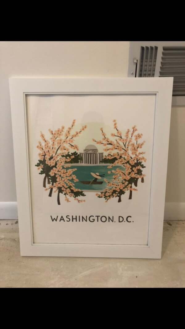 Newly framed D.C. Cherry Blossom Print (Rifle Paper Co/Paper Source)