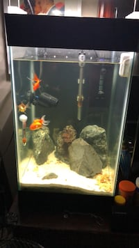 15 Gallon Column tank by Aqueon  New Westminster, V3L 3L5