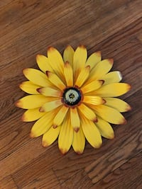 Yellow and white petaled flower decor