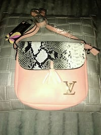 Bolso louis vuitton Santander