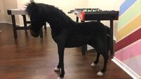 Big black horse for kids Newmarket, L3X