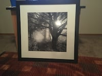 Black wooden framed painting of trees Andover, 67002