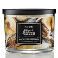 Cinnamon Spice and All Things Nice Holiday Candle! Edmonton, T6L 6M7