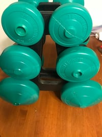 Brand new set of weights..2.5,5 and 10 lbs Edmonton, T5H 2W2