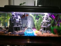 20 gal fish tank with super filter and fish Miami, 33186