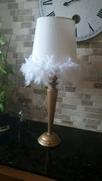 Matte gold table lamp with feather trim shade Ajax, L1T 4V4