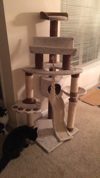 White and brown used cat tree Herndon, 20171