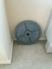 45 lbs Iron Excerise Plate