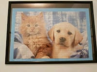 Cat & dog 1000 piece puzzle with frame Richmond Hill, L4S 2A8