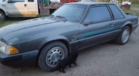 Ford - 5.0LMustang - 1990 25th Anniversary Edition 3138 km