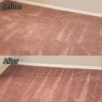 Carpet cleaning now  Tampa, 33614