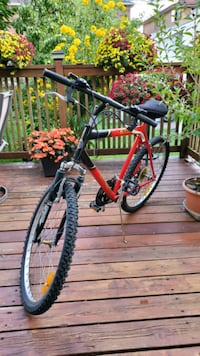Triumph Laser Dx 18 Bicycle  Toronto, M8W 1Y3