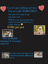 Pet sitter Plymouth, MN, USA
