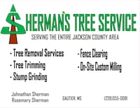 Here for all your tree service needs!!  Gautier