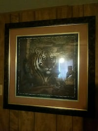 Tigar picture large Carlsbad, 76934