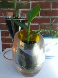 green and yellow ceramic vase Laval, H7G 2W7
