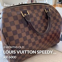 Louis Vuitton speedy 30 Hakadal, 1484