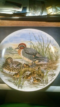 Green-Winged Teal Duck Collector Plate Centreville, 20120
