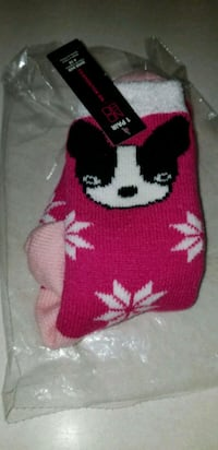 Boston Terrier Slipper Socks Fort Pierce, 34951