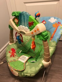 Fisher Price Bouncy Chair $15 Markham