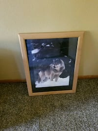 Wood framed picture of Wolf