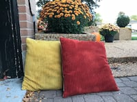 Two pillows for $10 cases removable  Brampton, L6W 2E5