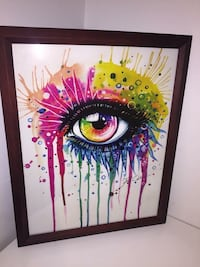 "Rainbow eye Brand new framed art with glass 11x14"" , pick up in mission hwy7 and hwy 11 . 3692 km"
