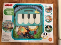Fisher-Price® Kick-N-Play Piano activity gym Vancouver, V5N 3Z3