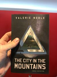 The City in the Mountains book