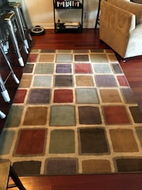 Modern rug in great condition!  Chicago, 60618