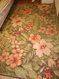 green and pink floral rug Rogersville, 37857
