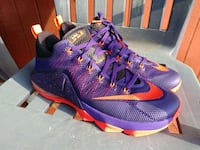 Lebron 12 court Low's Arlington, 22205