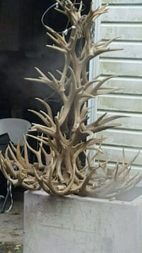 deer chandelier Laurel