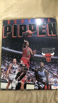 Chicago Bulls Scottie Pippen Vintage 1993 Poster