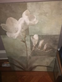 Frameless White Orchid painting. 22 x 34 inches. Easy to hang. Colors: Gray, White, tan, green. No holes, tears or spots. Pet free home