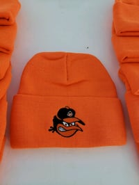 Baltimore orioles pulled over Winter hat mean bird Glen Burnie, 21061